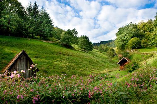 © Tourismus-Zweckverband im Tal der Murg
